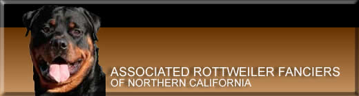 Associated Rottweiler Fanciers of Northern California